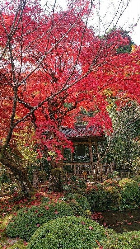 京都05.jpg
