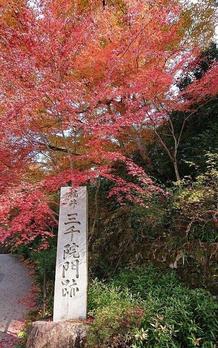 京都02.jpg