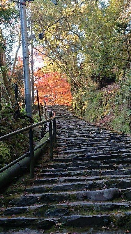 京都09.jpg