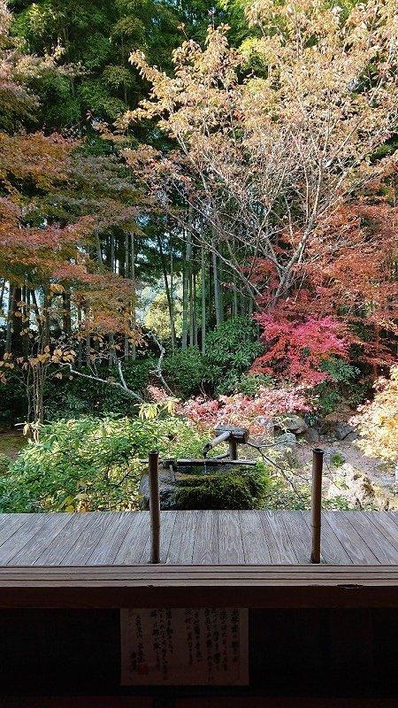 京都04.jpg