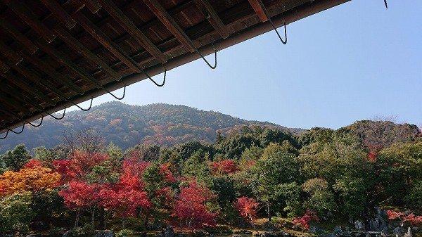 京都18.jpg