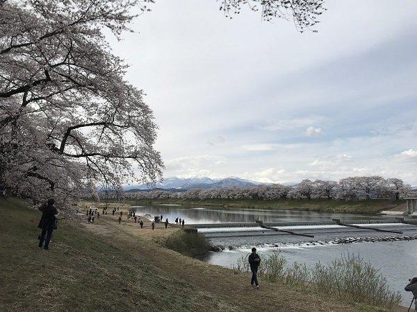 image06 ogawara.jpg